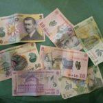 Румынские деньги бани